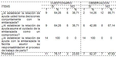 cuidados_enfermeria_embarazadas/plan_accion_enfermeras