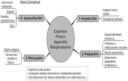 guia_historia_clinica/examen_fisico_aparato_respiratorio
