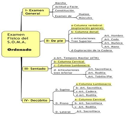 guia_historia_clinica/exploracion_general_sistema_osteomioartocular