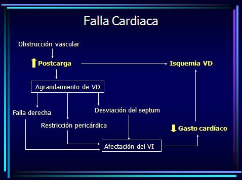 TEP_tromboembolismo_pulmonar/fallo_cardiaco_fracaso_corazon