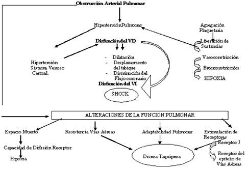 TEP_tromboembolismo_pulmonar/fisiopatologia_etiologia