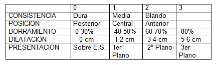 apuntes_ginecologia/parto_pretermino_test_bishop