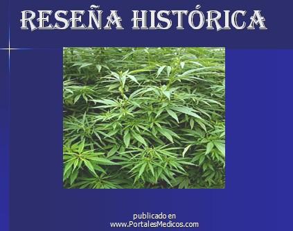 marihuana/historia_revision_historica