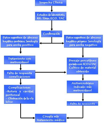absceso_hepatico/amebiano_algoritmo_diagnostico