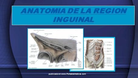 hernias_inguinales/anatomia_region_inguinal
