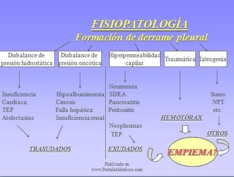 patologia_pleural/fisiopatologia_derrame