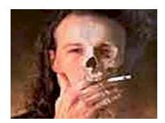 tabaquismo_enemigo_mortal/causas_razones_fumar