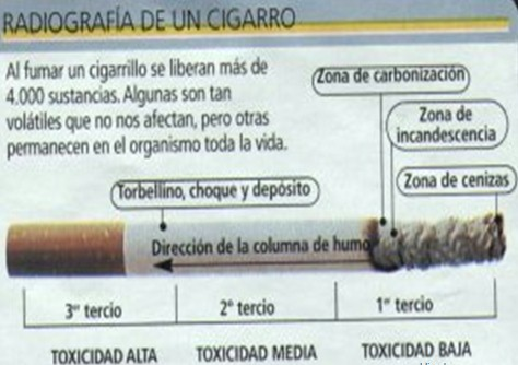 tabaquismo_enemigo_mortal/radiografia_cigarro