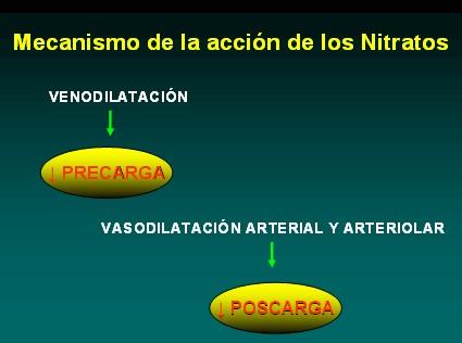 farmacologia_terapeutica_antianginosa/mecanismo_accion_nitratos
