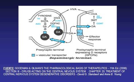 enfermedad_de_Parkinson/transmision_dopaminergica