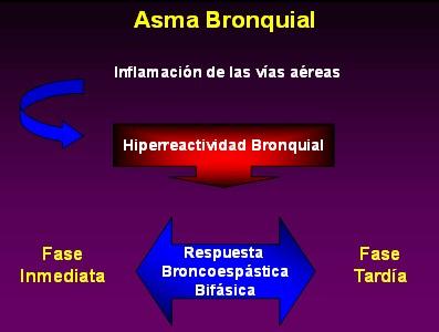 farmacologia_asma_bronquial/hiperreactividad_bronquial