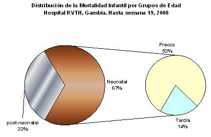 mortalidad_infantil/distribucion_edad_edades