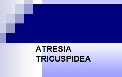 cardiopatias_congenitas/atresia_tricuspidea