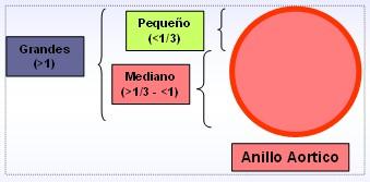 cardiopatias_congenitas/clasificacion_dimensiones_defecto