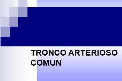 cardiopatias_congenitas/tronco_arterioso_comun