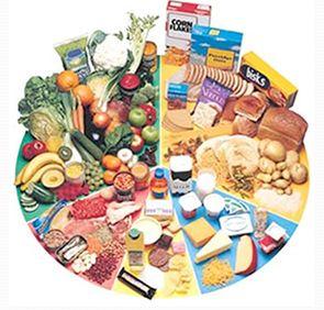 nutricion_ejercicio_salud/torta_nutricional
