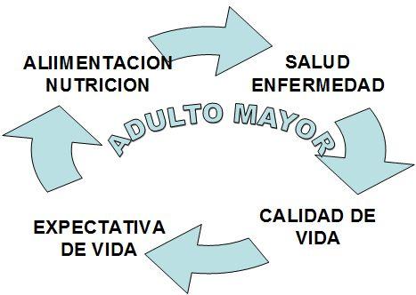 salud_paciente_geriatrico/componentes_ciclicos