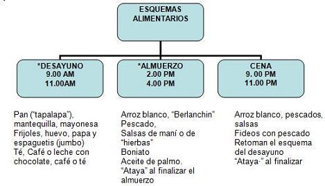 salud_paciente_geriatrico/esquemas_alimentarios