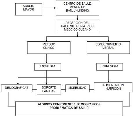 salud_paciente_geriatrico/estrategia_investigacion