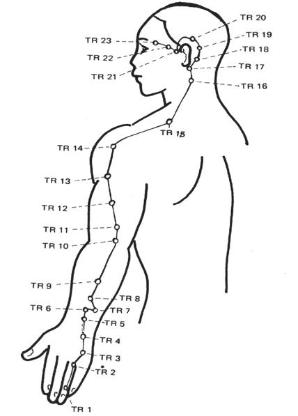 The Shoulder as well Flat Feet And Fallen Arches furthermore Tender points as well 07 0272 besides Pain Mechanisms. on chronic pain