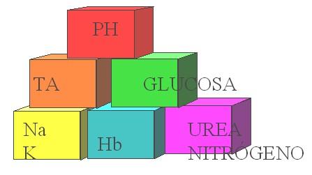 guia_basica_fisioterapia/funciones_renales_nefrologia