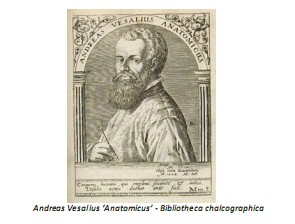 Universidad_Padua_Medicina/andrea_vesalius_anatomicus