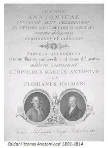 Universidad_Padua_Medicina/caldani_icones_anatomicae