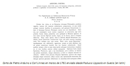 Universidad_Padua_Medicina/carta_pietro_arduino