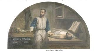 Universidad_Padua_Medicina/imagen_andrea_vesalio