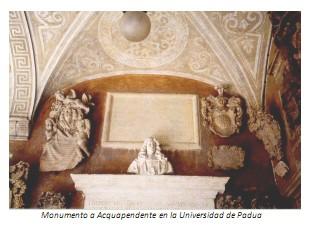 Universidad_Padua_Medicina/monumento_acquapendente_padua