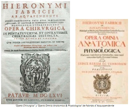 Universidad_Padua_Medicina/obras_fabrizio_d`acquapendente