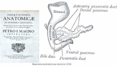 Universidad_Padua_Medicina/observaciones_anatomicas_santorini