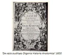 Universidad_Padua_Medicina/vocis_audituso_organis