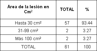 pie_diabetico_anciano/area_lesion_centimetros