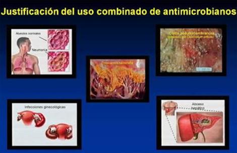 resistencia_bacteriana_antibioticos/justificacion_uso_combinado