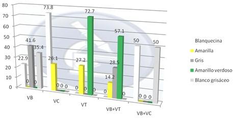 vaginitis_vaginosis_bacteriana/color_aspecto_leucorrea