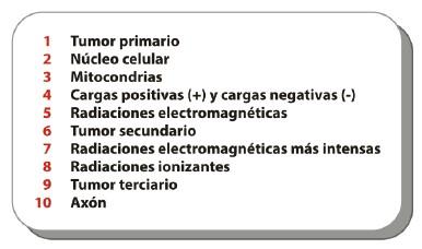 electricidad_cancer/sistema_nervioso_autonomo