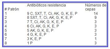 MARSA_aureus_meticilina/patron_resistencia_antibioticos