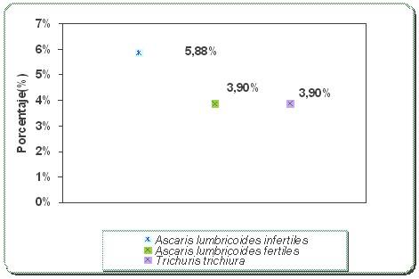 perfil_epidemiologico_esquistosomiasis/ascaris_lumbricoides_trichiura