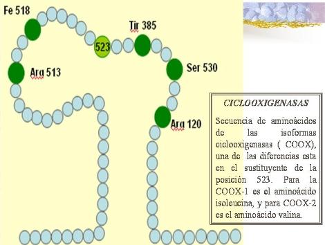 antiinflamatorios_no_esteroideos/COX_aa