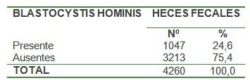 blastocitis_blastocytis_hominis/presencia_heces_fecales