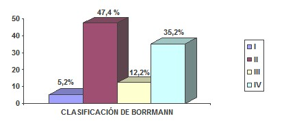 cancer_gastrico_avanzado/clasificacion_Borrmann_lesiones