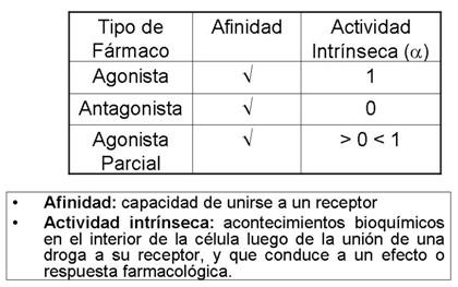 farmacodinamia_farmacologia/afinidad_actividad_intrinseca