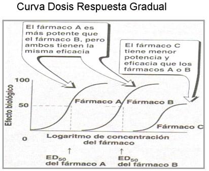 farmacodinamia_farmacologia/dosis_respuesta_gradual2