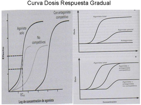 farmacodinamia_farmacologia/dosis_respuesta_gradual3