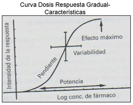 farmacodinamia_farmacologia/respuesta_gradual_caracteristicas