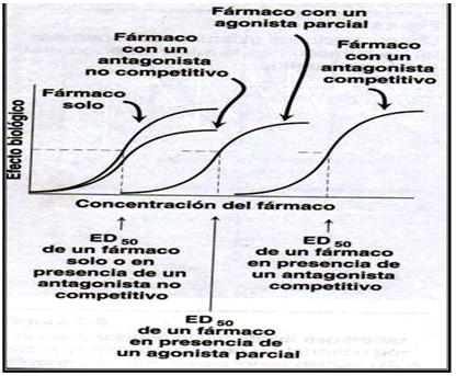 farmacodinamia_farmacologia/respuesta_gradual_caracteristicas2