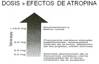 farmacos_antagonistas_muscarinicos/dosis_efectos_antropina