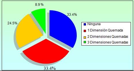 sindrome_burnout_enfermeria/dimensiones_quemadas