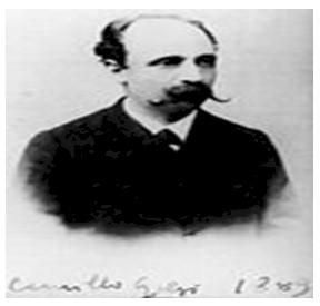 historia_sinapsis_neuronal/italiano_camillo_golgi